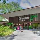 Топ 10 лучших зоопарков мира