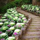 Быстро и экономно: реальные примеры великолепного оформления садового участка своими руками