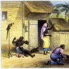 Когда умер последний раб? 6 исторических фактов, о которых мы не задумывались