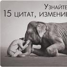 15 вдохновляющих цитат, способных изменить жизнь