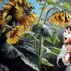 Чудесный мир детства