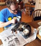 Когда кот требует внимания, его ничего не остановит!