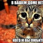 В вашем доме нет кота?! Кого ж вы любите тогда?