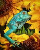 Фотографы со всего мира показали свои лучшие фотографии животных