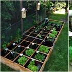 14 примеров грядок, которые сделают огород красивым и ухоженным