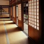 Почему жители Японии никого не зовут к себе в гости?