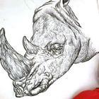 Юный серб рисует с двух лет и уже иллюстрирует энциклопедии