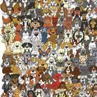 Панда потерялась среди армии собак. А вы сможете найти ее?