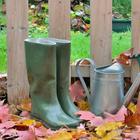 7 дел, которые нужно сделать в саду в ноябре