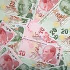 Турецкая валюта побила антирекорд