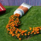 Цветочные горшки, которые превратят ваши цветы в нечто удивительное!
