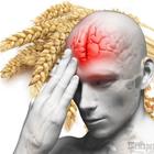 Питаться с умом: 15 продуктов, полезных для мозга