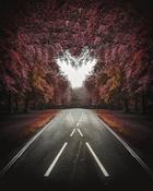 Прекрасные пейзажные фотографии Джоша Перретта