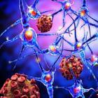 2 способа воздействия на раковую клетку — читать всем