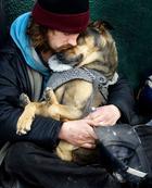 Фотографии, доказывающие, что собаки любят нас независимо от того, сколько у нас денег