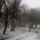 Крым. Утро. Симферополь