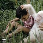 25 животных альбиносов, которым не нужен цвет, чтобы выглядеть круто