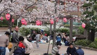 Быть пенсионером в Японии оказалось неожиданно хорошо