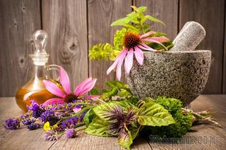 Лекарственные травы для укрепления иммунитета
