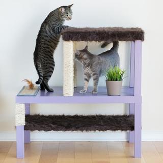 Как сделать развлекательный комплекс для кошки своими руками