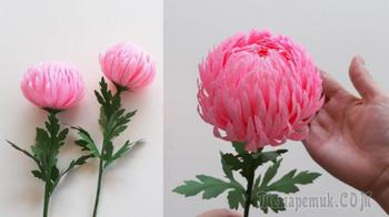 Очень красивая хризантема за 30 минут