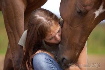 Монолог проданной лошади (Стих)