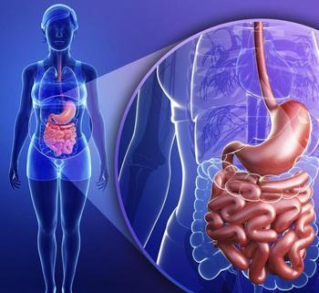 Генеральная уборка тонкого кишечника; 4 эффективных способа