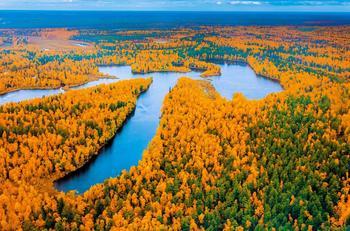 Сказочно красивые снимки осени. Золотая пора