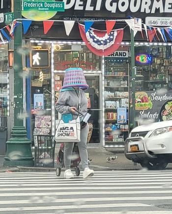 Неординарные обитатели Нью-Йорка, которые могут стать ходячими достопримечательностями этого города