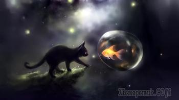 Кошки и незримое