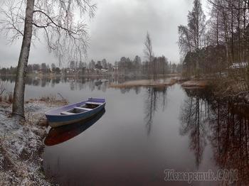 Ноябрь в пригороде Санкт-Петербурга... Фото работы Ирины З.