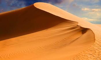 Самое интересное о пустыне
