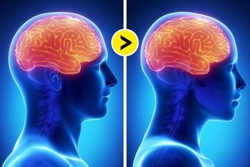 7 научно доказанных фактов о мужском и женском мозге и стереотипы, которые пора забыть