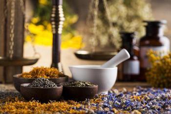 Лекарственные травы для снижения давления
