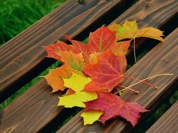 3 эффективных обряда на ноябрь для избавления от бедности, неудач и потерь