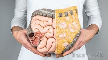 Чистка кишечника дома — лучшие народные способы привести в норму организм