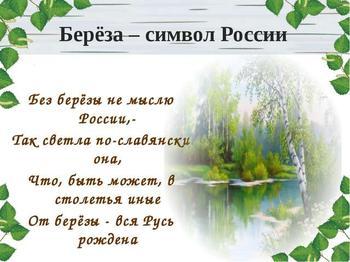 Почему берёза является символом России. От древней мистики до современности