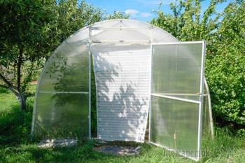 Как и чем затенять поликарбонат от солнца – советы томатоводов