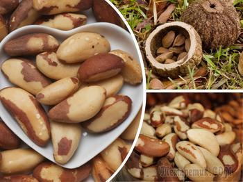 Топ-7 полезных свойств бразильского ореха