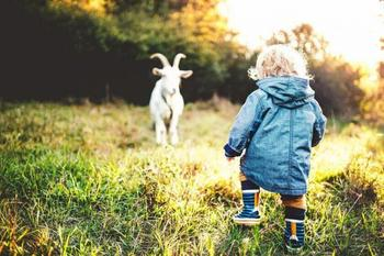 5 опасных ситуаций, которые могут случиться с ребёнком на даче