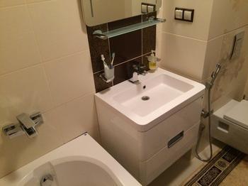 Ванная: микс из испанского унитаза, белорусских мраморных раковины и ванны, китайских смесителей