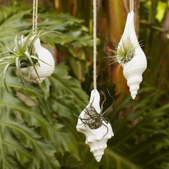Интересные идеи для вертикального сада