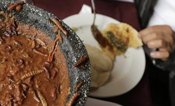 Самые экзотические блюда мира для любителей экстрима