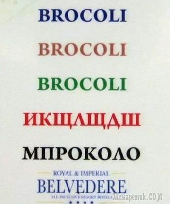 28 уморительных переводов меню из иностранных ресторанов