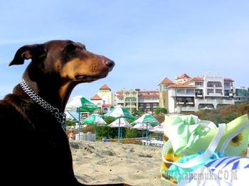 Болгарское побережье Черного моря 62. Синеморец - рай для отдыха