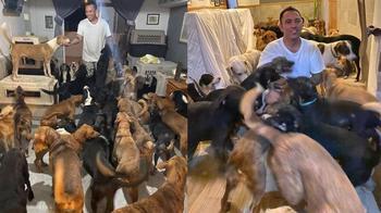 Мужчина, который приютил у себя дома сотни бездомных собак