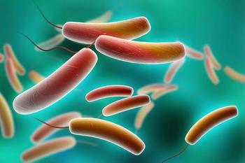 7 способов детоксикации с помощью пробиотиков