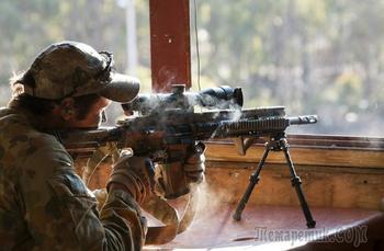 Современные снайперские винтовки. Часть 2
