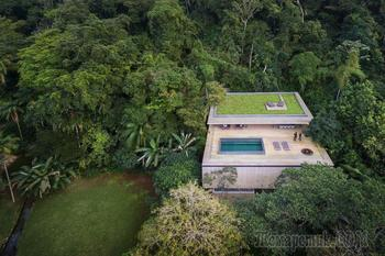 Дом посреди джунглей