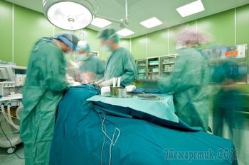 Медицинские технологии, которые могут привести к бессмертию